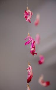 Polku, keinokuituhius, kuihtuneet kukat / Path, synthetic hair, wilted flowers